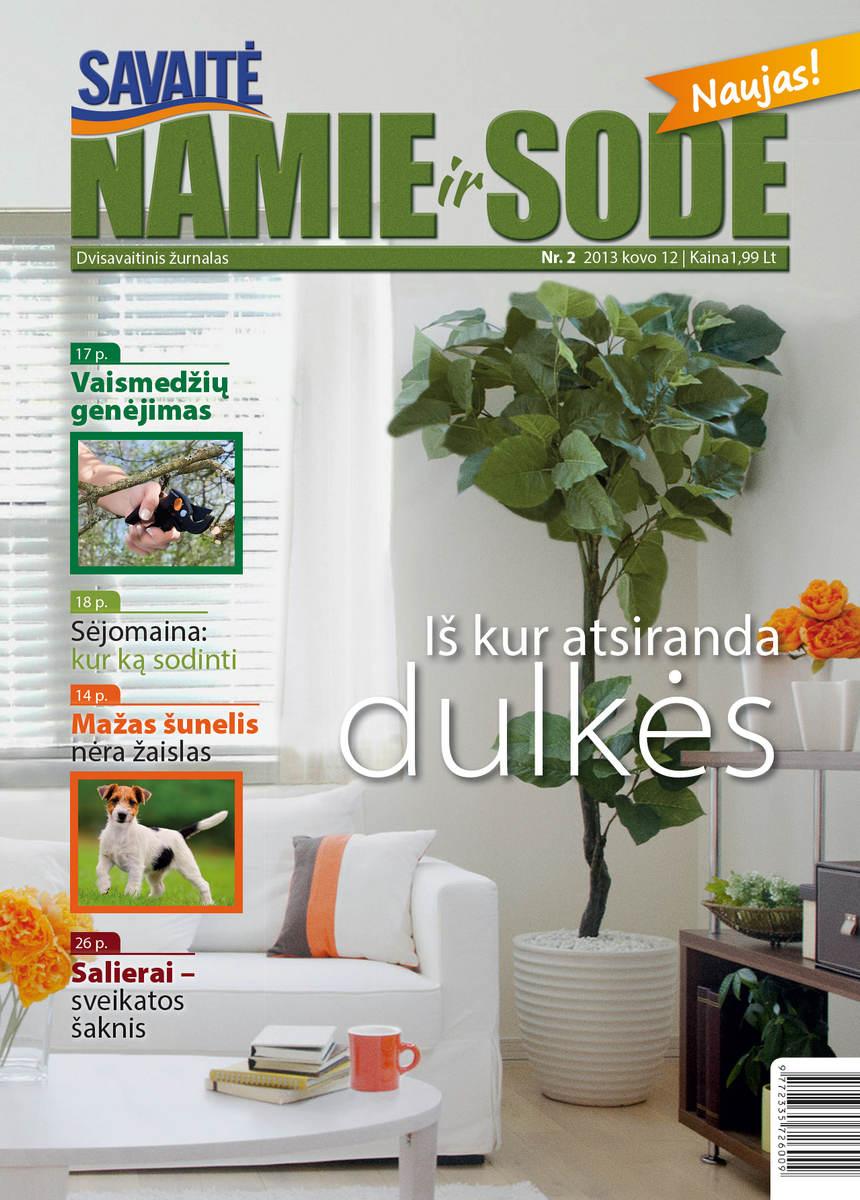 Namie Ir Sode 02 (2013)