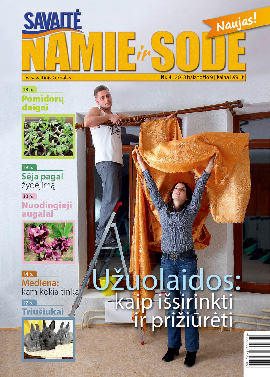 Namie Ir Sode 04 (2013)