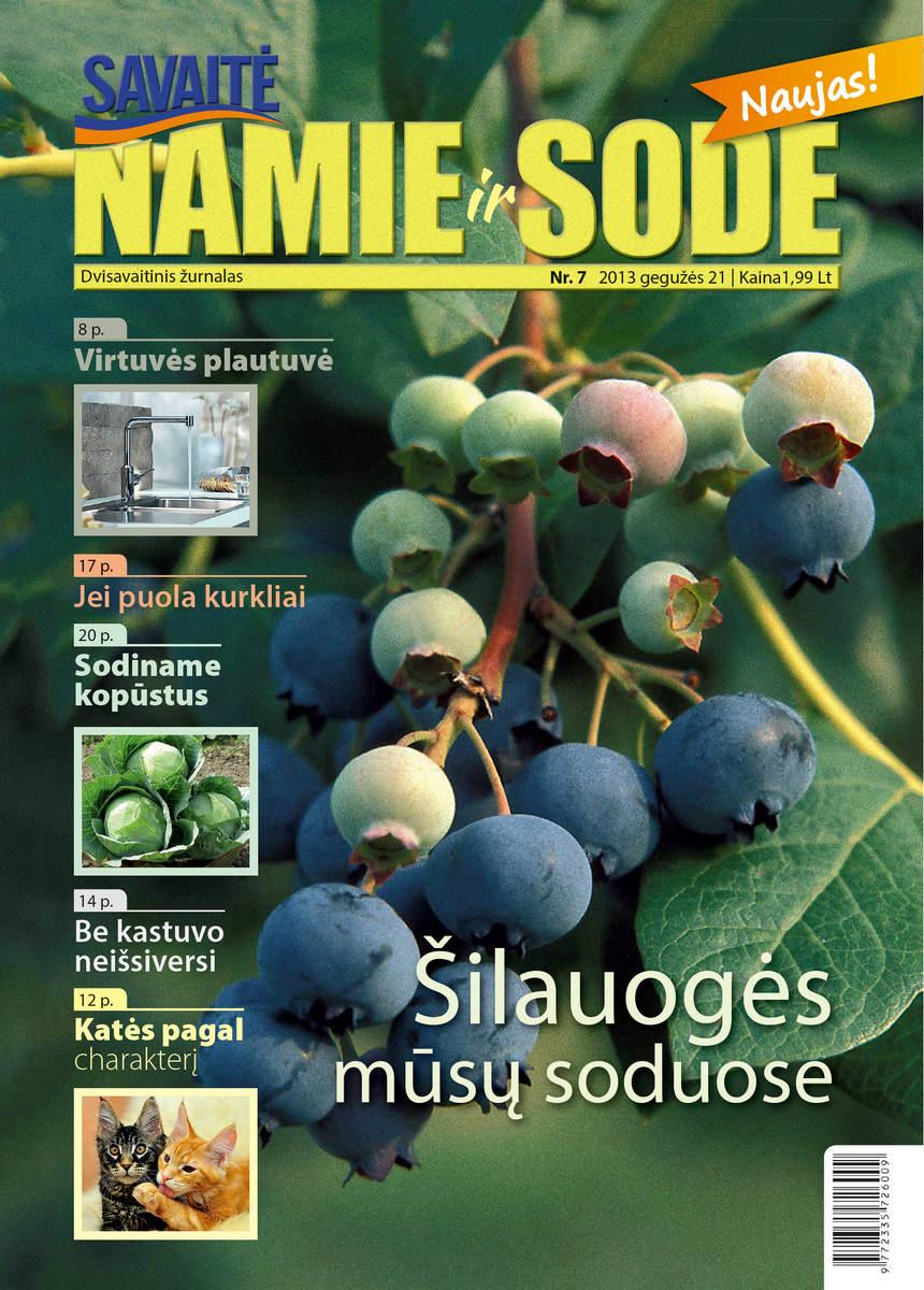 Namie Ir Sode 07 (2013)