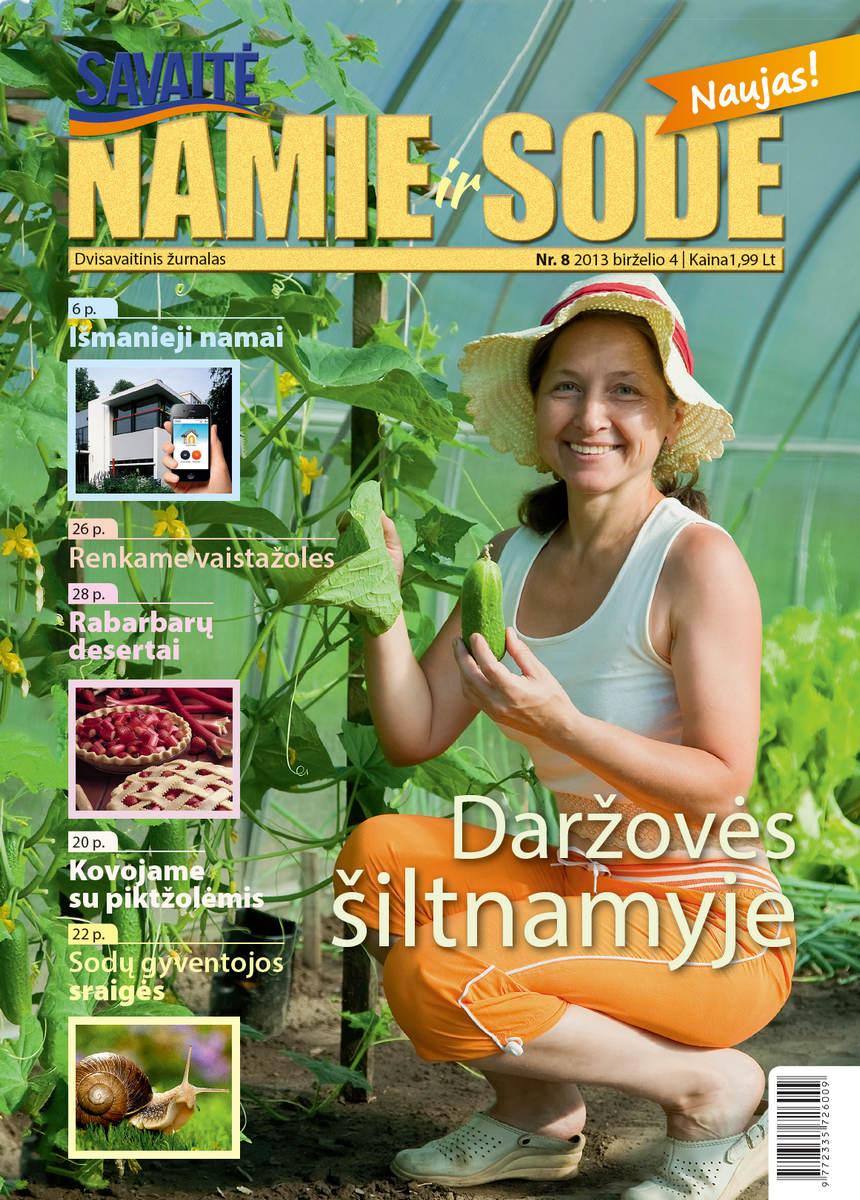 Namie Ir Sode 08 (2013)