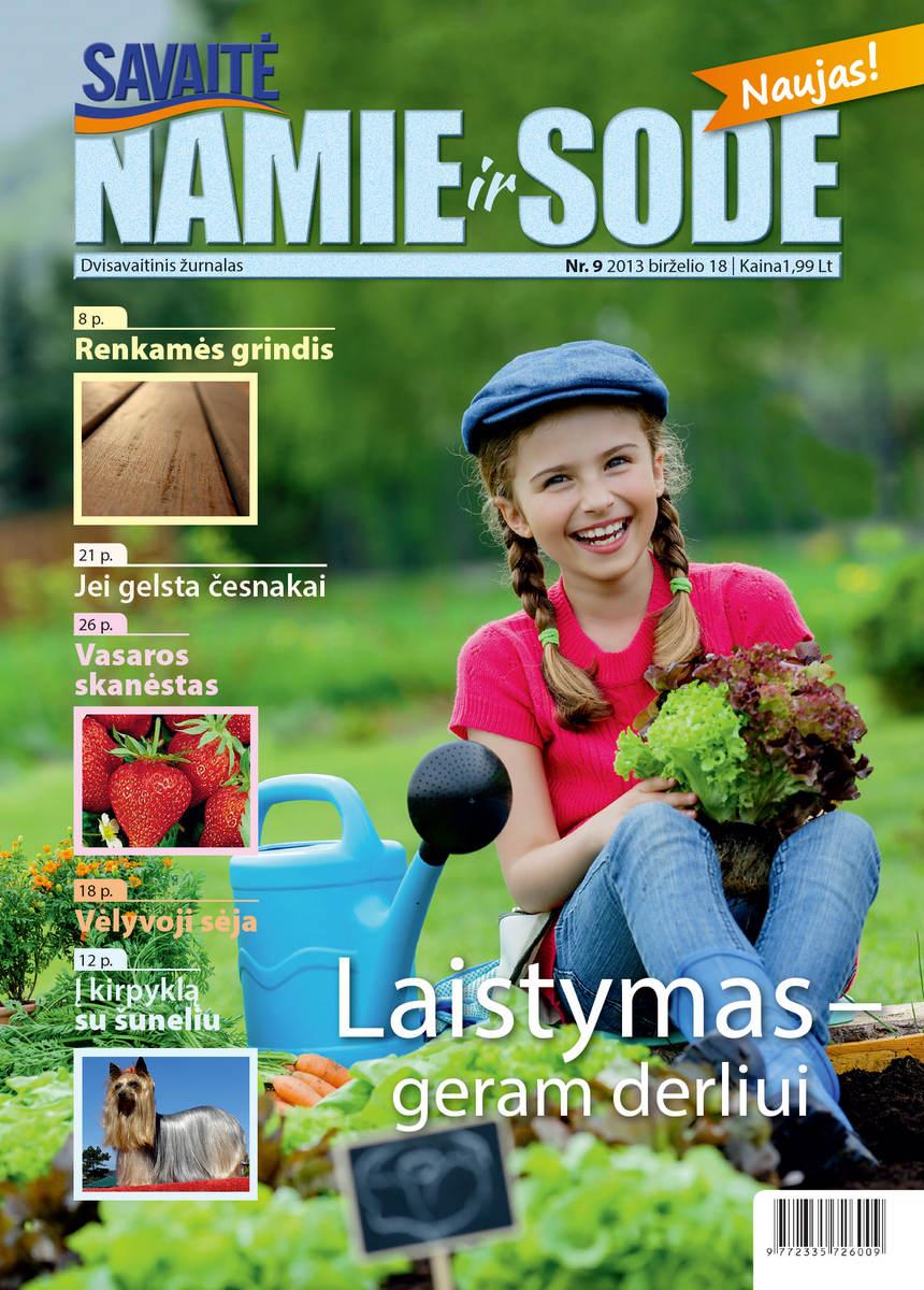 Namie Ir Sode 09 (2013)