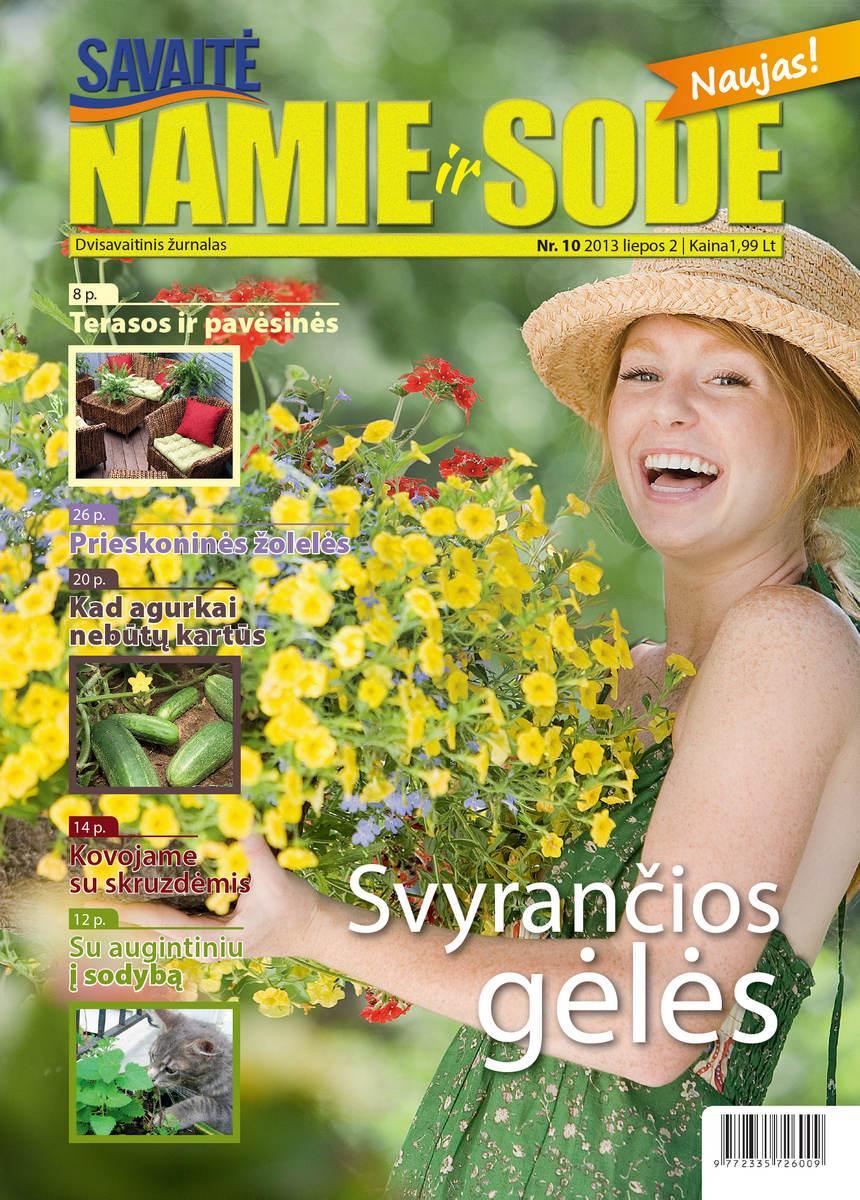 Namie Ir Sode 10 (2013)