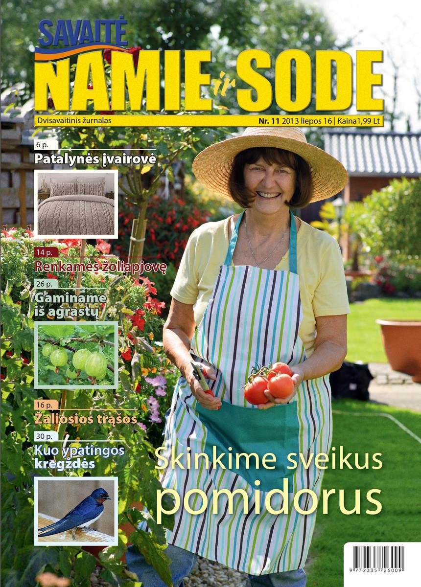 Namie Ir Sode 11 (2013)