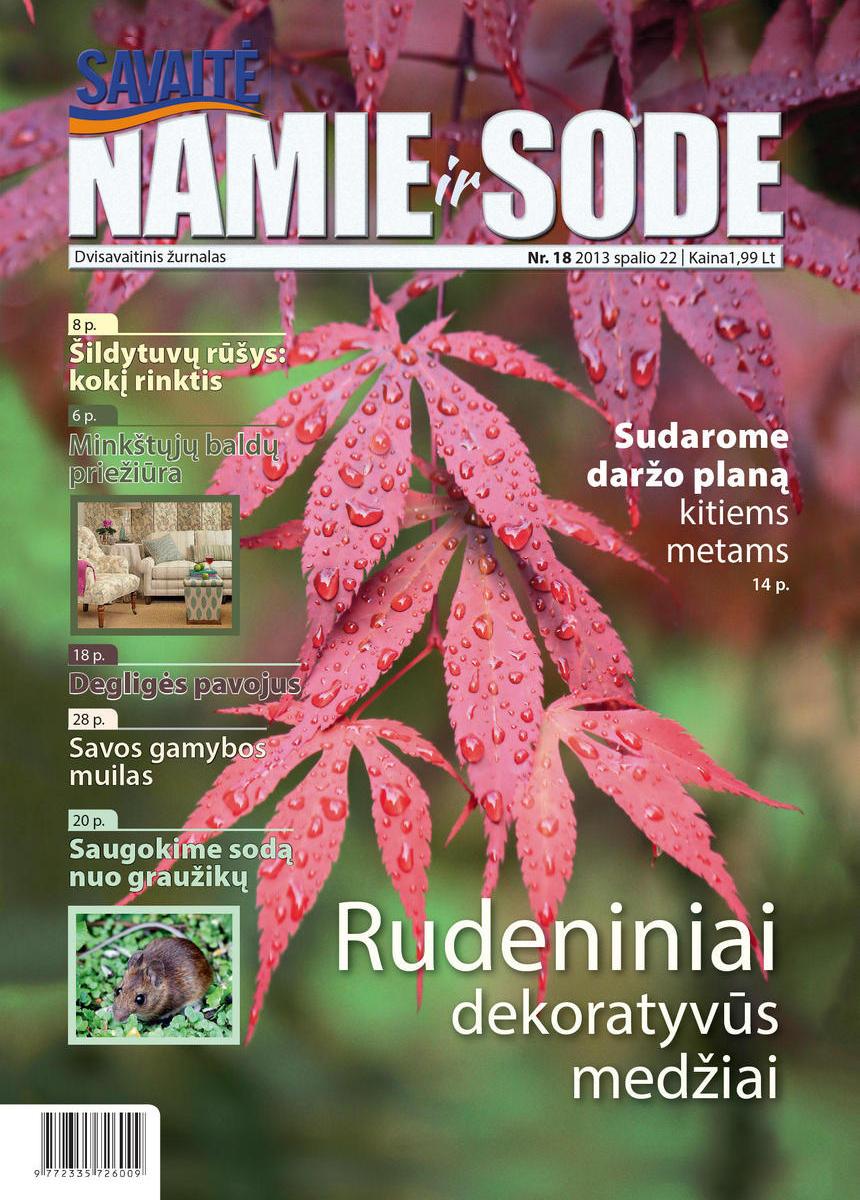 Namie Ir Sode 18 (2013)
