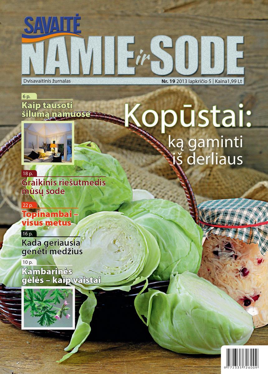 Namie Ir Sode 19 (2013)