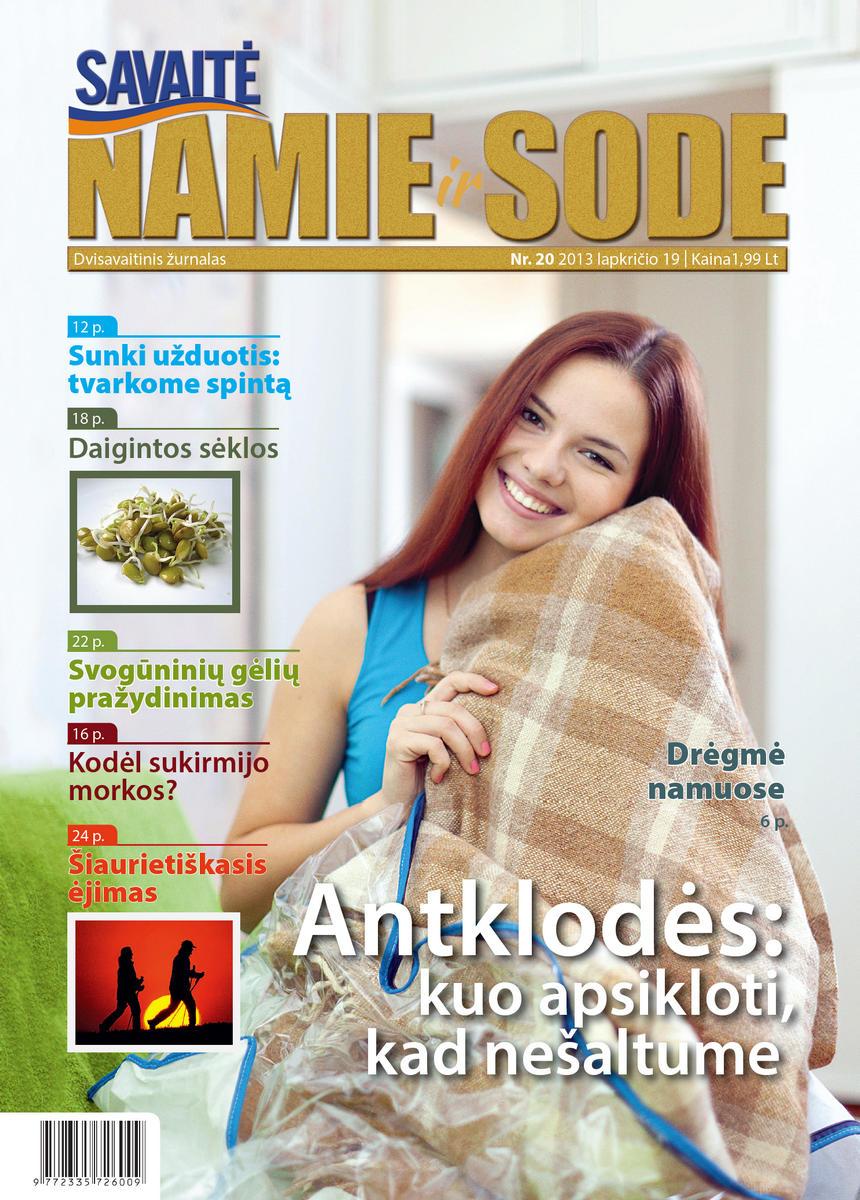 Namie Ir Sode 20 (2013)
