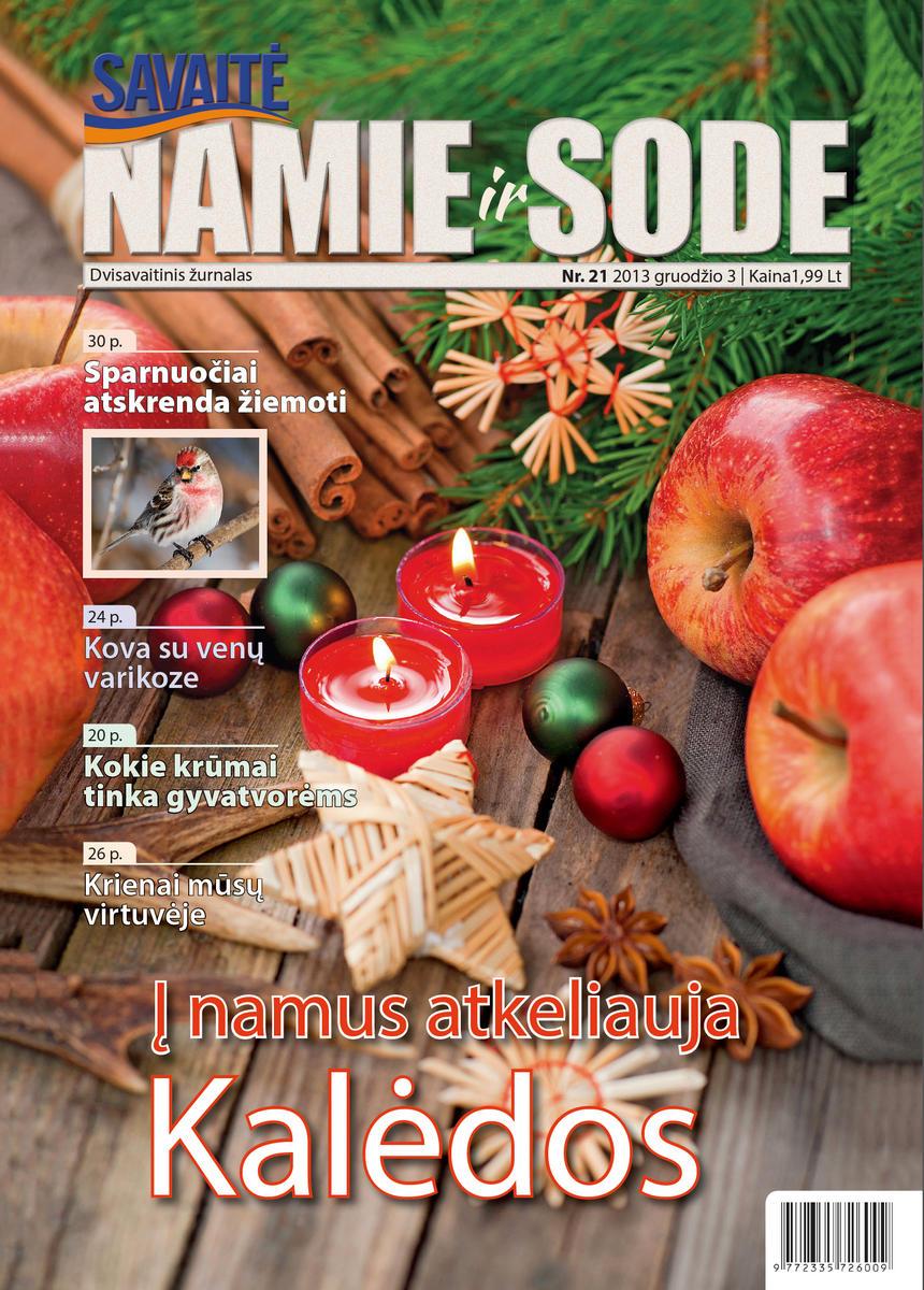 Namie Ir Sode 21 (2013)