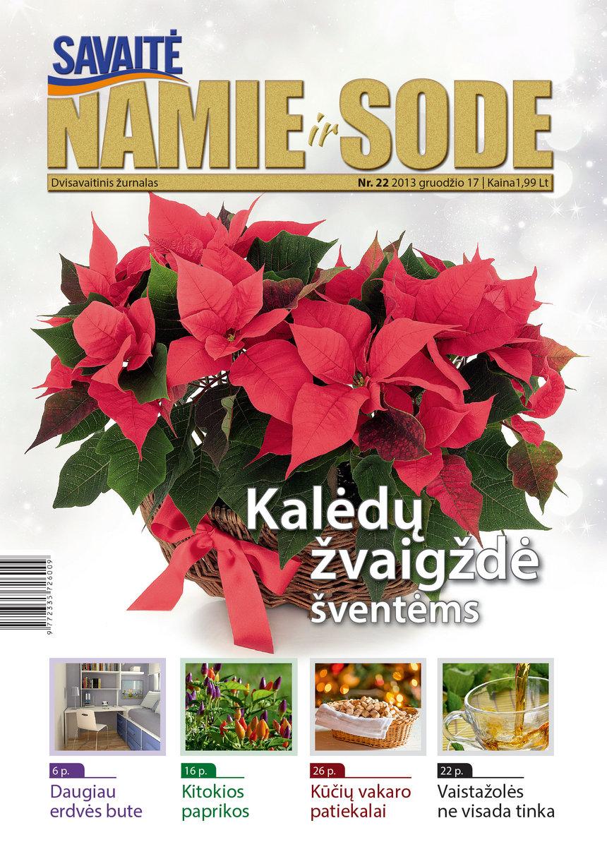 Namie Ir Sode 22 (2013)