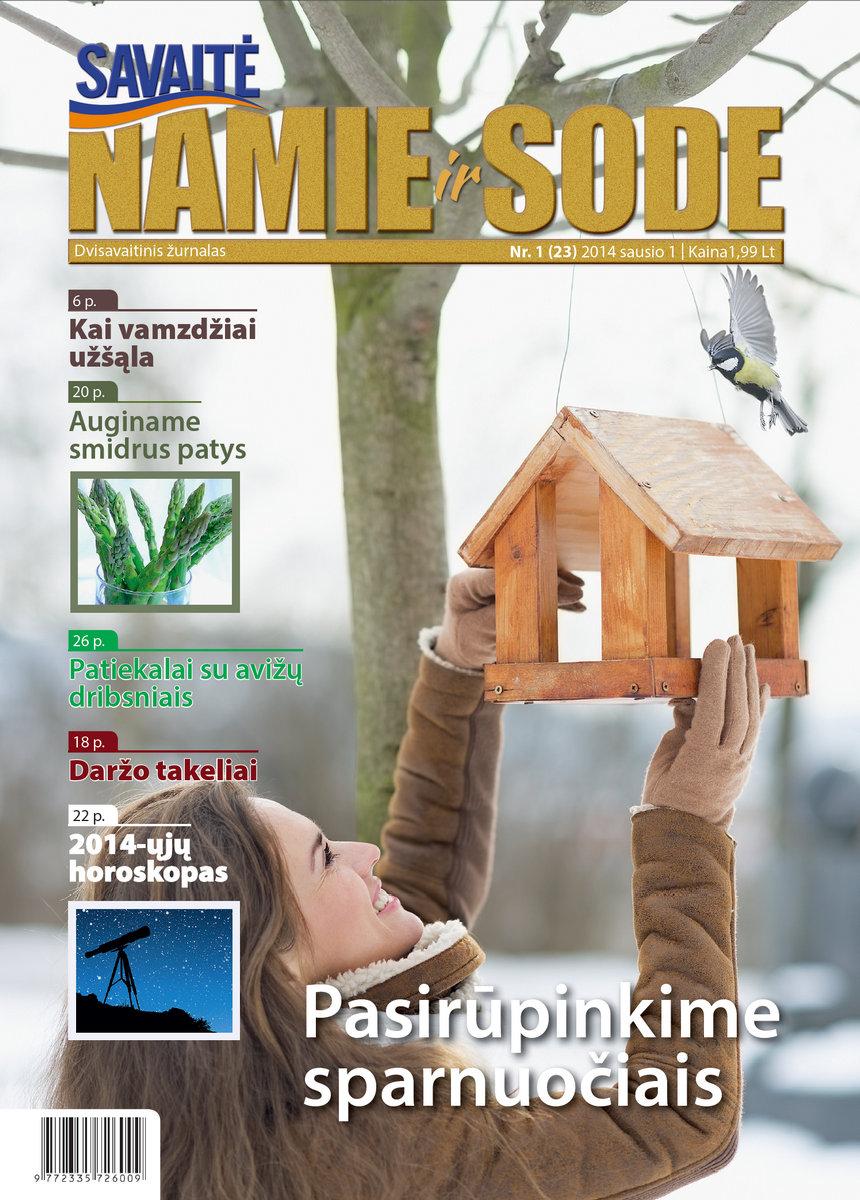Namie Ir Sode 01 (2014)