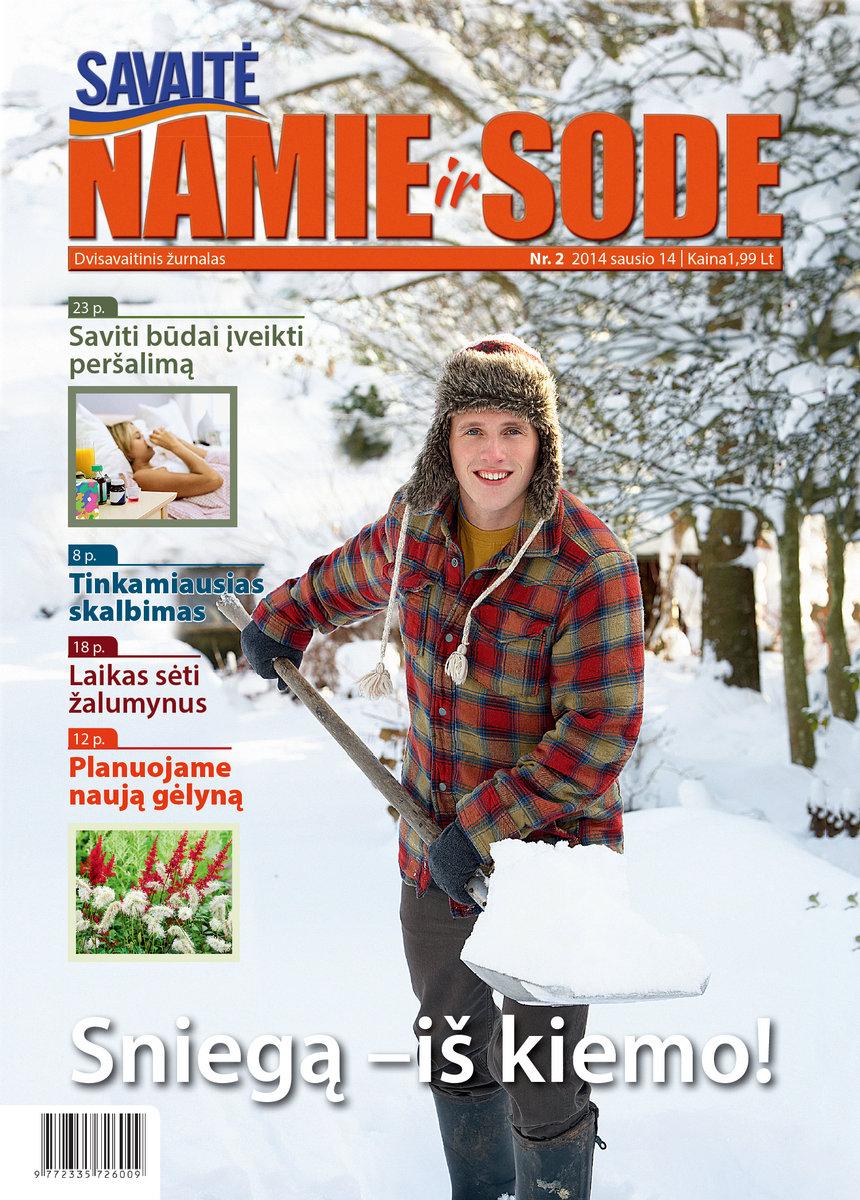 Namie Ir Sode 02 (2014)