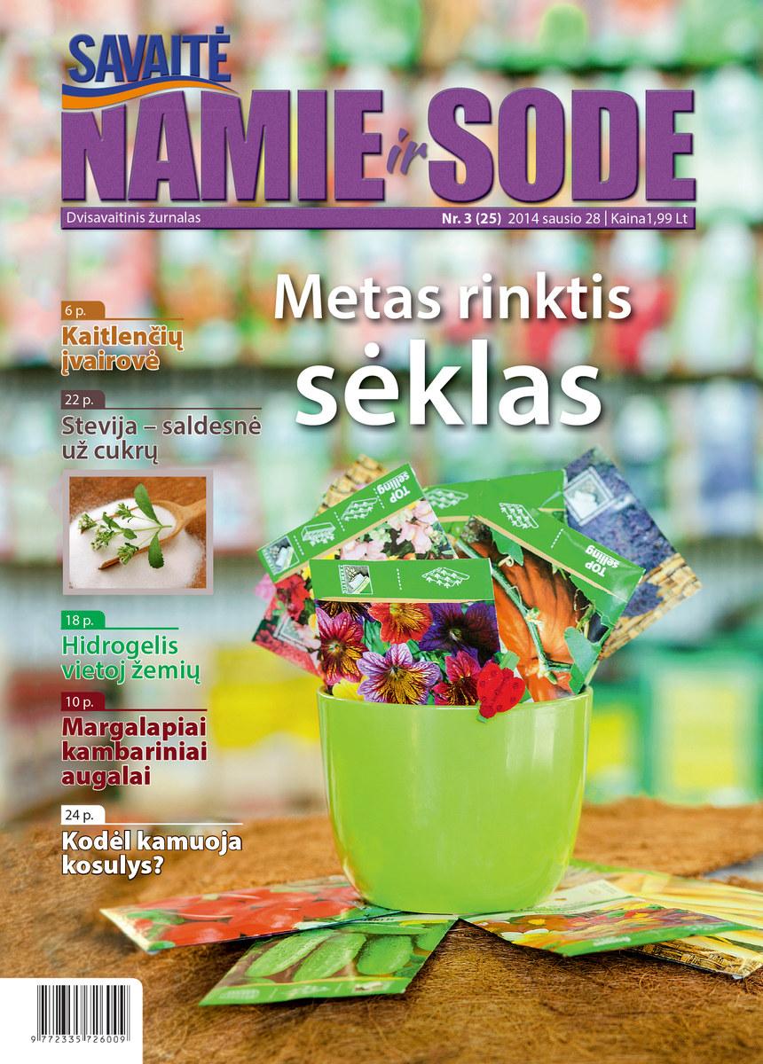 Namie Ir Sode 03 (2014)