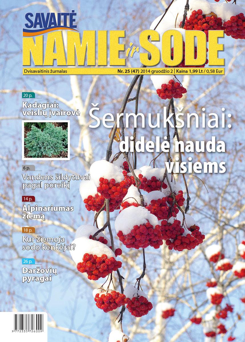 Namie Ir Sode 25 (2014)