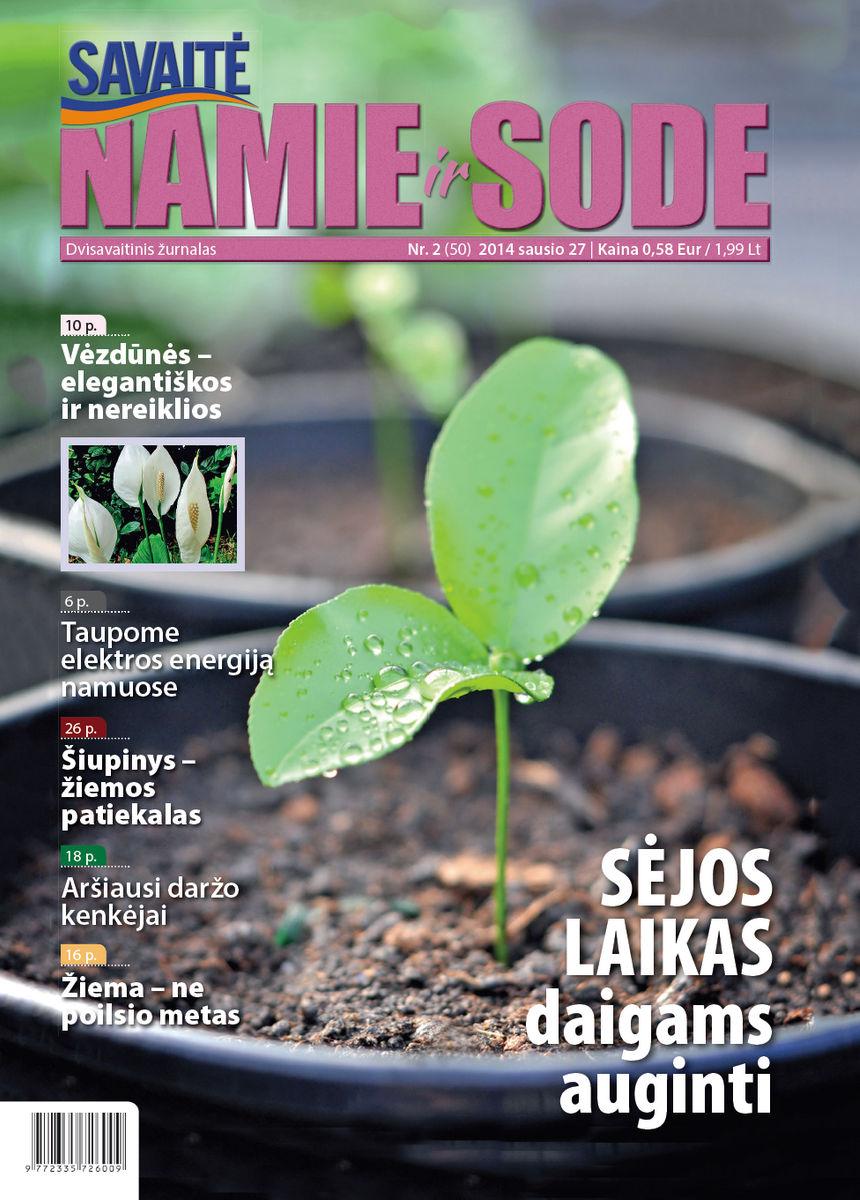 Namie Ir Sode 02 (2015)