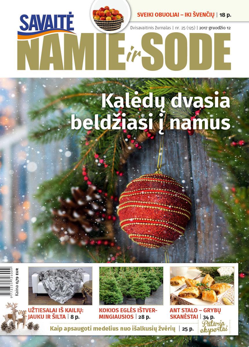 Namie Ir Sode 25 (2017)
