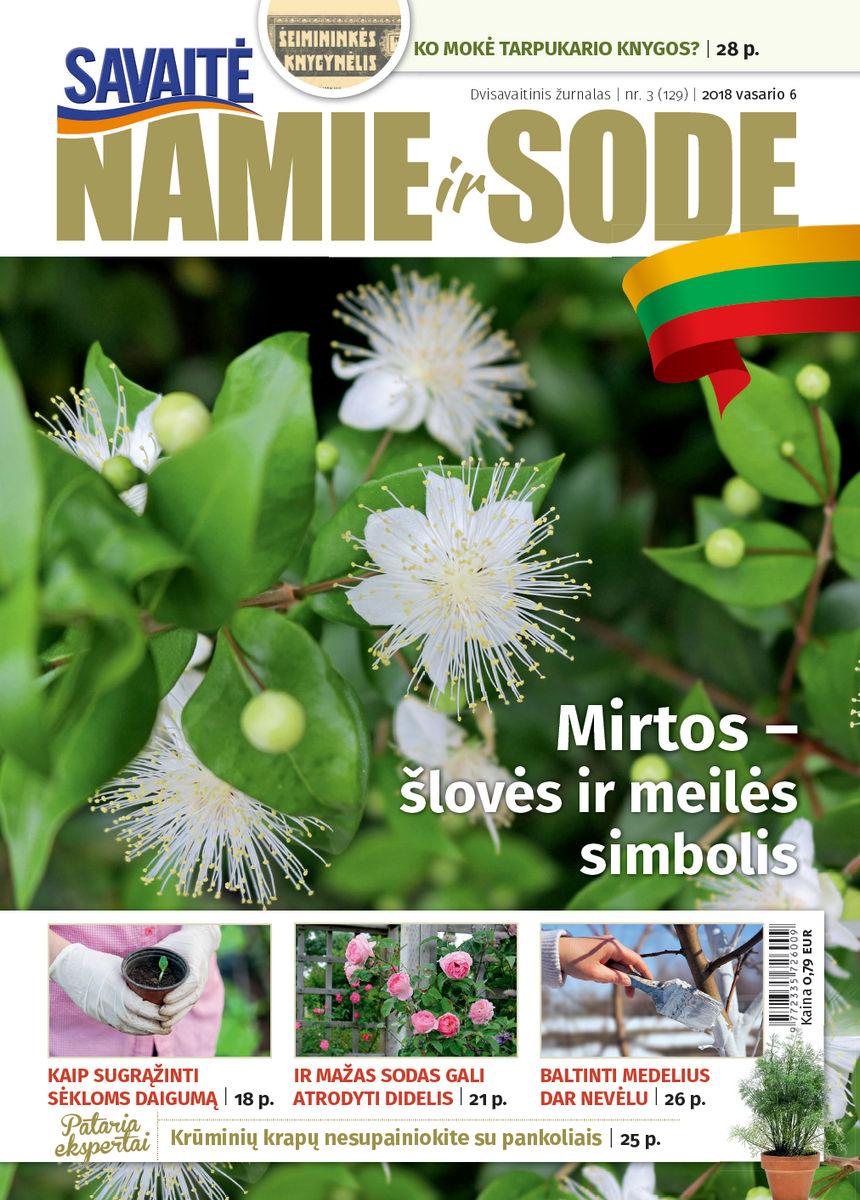 Namie Ir Sode 03 (2018)