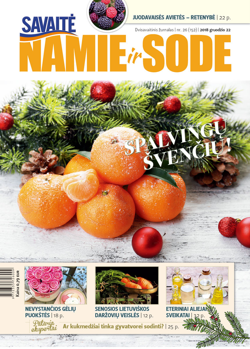 Namie Ir Sode 26 (2018)