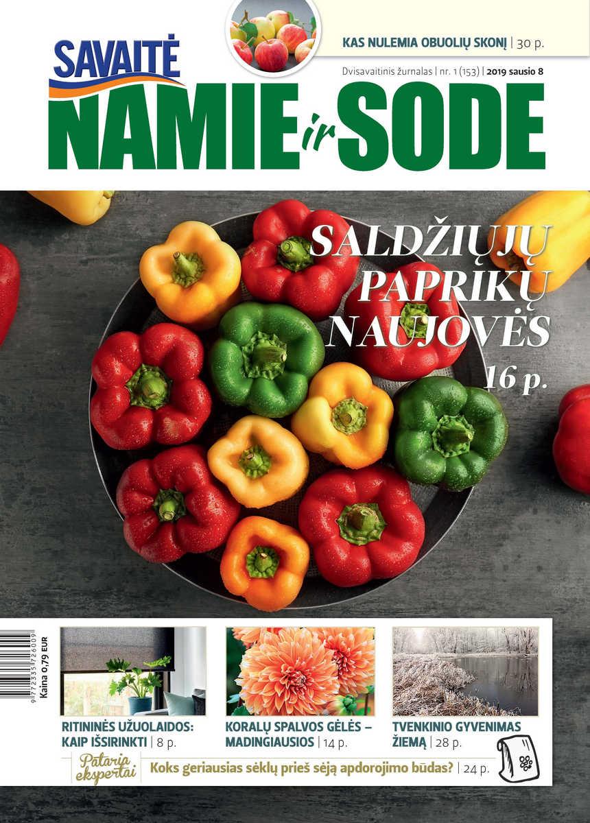 Namie Ir Sode 01 (2019)