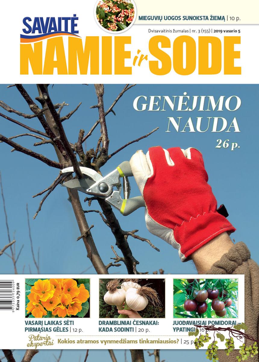 Namie Ir Sode 03 (2019)